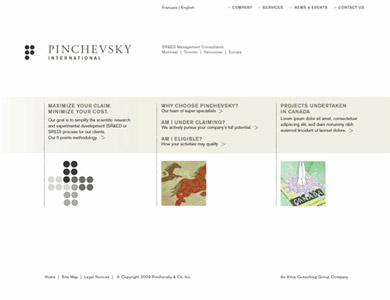 Website for Pinchevsky